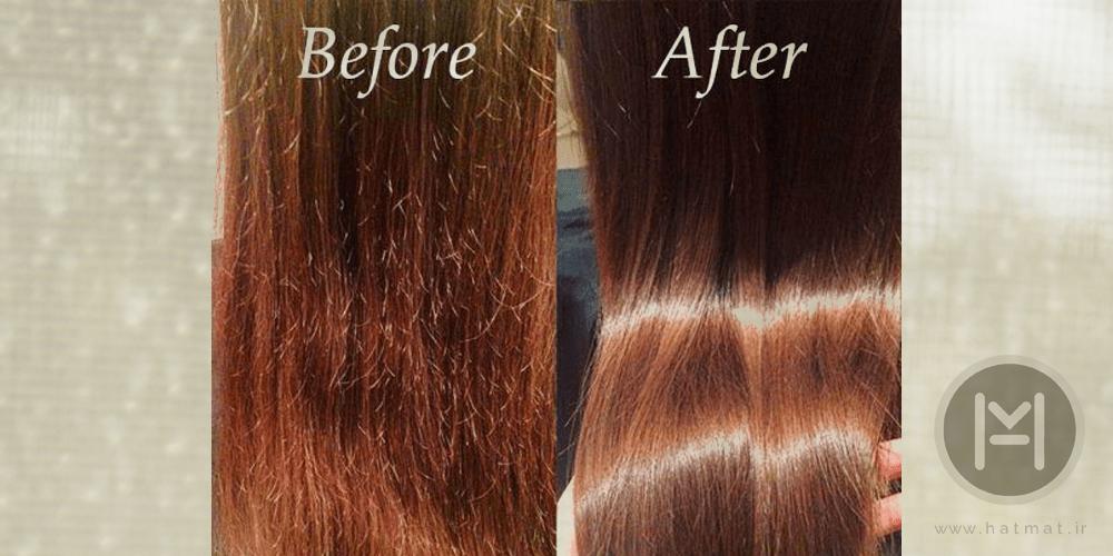 نقش روغن زیتون در سلامت مو